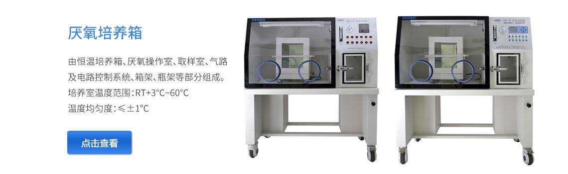 上海跃进厌氧培养箱